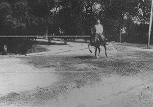 Кирасир-офицер галопом проезжает на коне по Захаржевской улице, сзади - Кадетский бульвар.