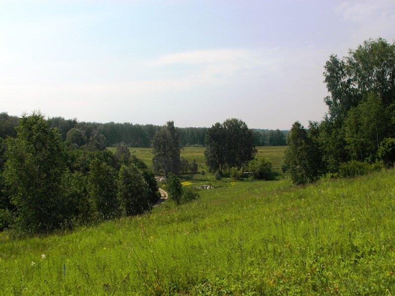 Клубничные поляны и грибные леса в окрестностях Новосибирска. WOW 30 Май 2015 22:59 седьмое