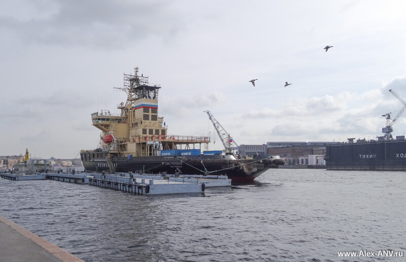 Ледокол 'Санкт-Петербург', вид сзади.  В корме специальный вырез под нос буксируемого судна.