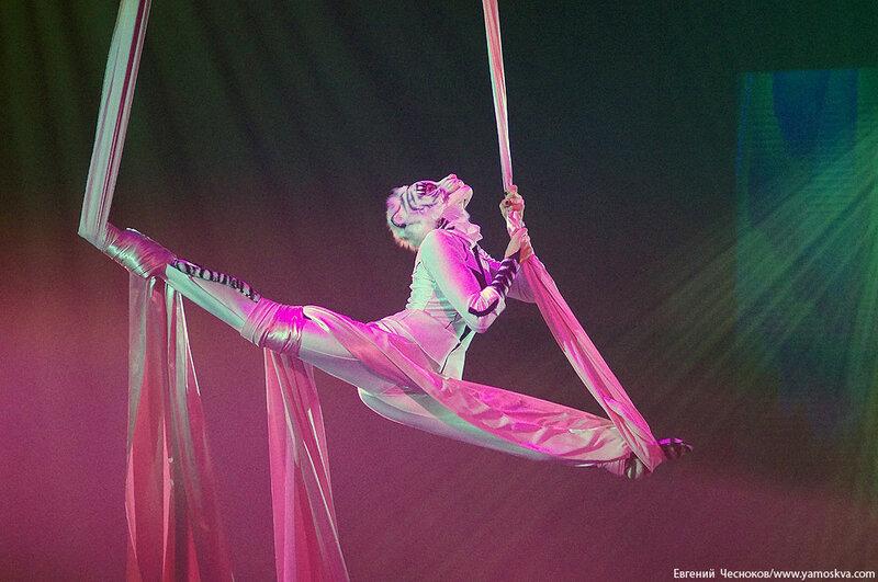 Осень. Цирковой мюзикл Мр Тигр. 23.10.15.02..jpg