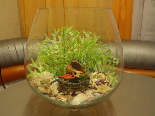 Сухой аквариум своими руками мастер класс 59