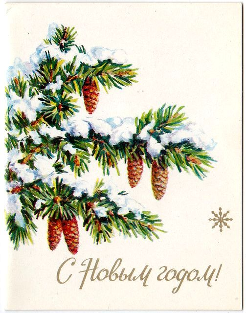 Шишки на заснеженной елке. С Новым годом!
