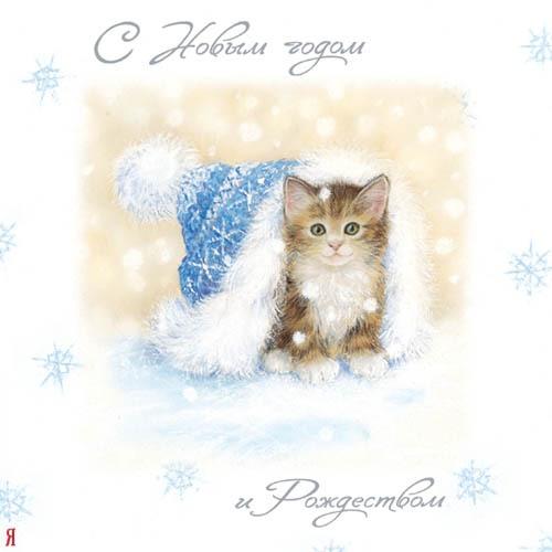 Новым годом и Рождеством! Котеночек