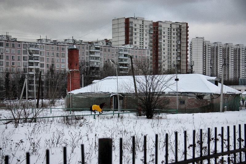 Ясенево