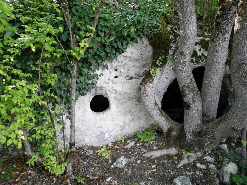 Хоббичья нора - пещера с круглым окном и дверью с выросшим перед ней деревом