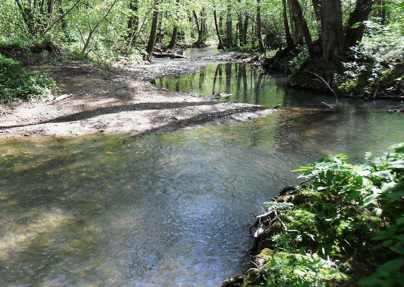 На Природе, у реки ... SAM_7699-1.JPG