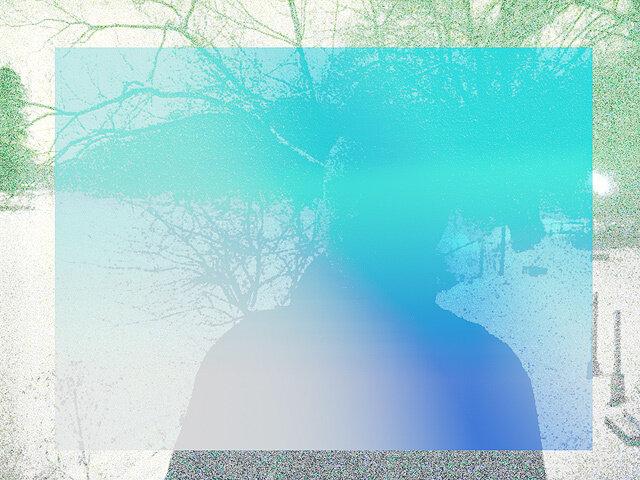 kosmopes в Царицынском парке — 7 декабря 2013 г., 0:24, СС0/public domain