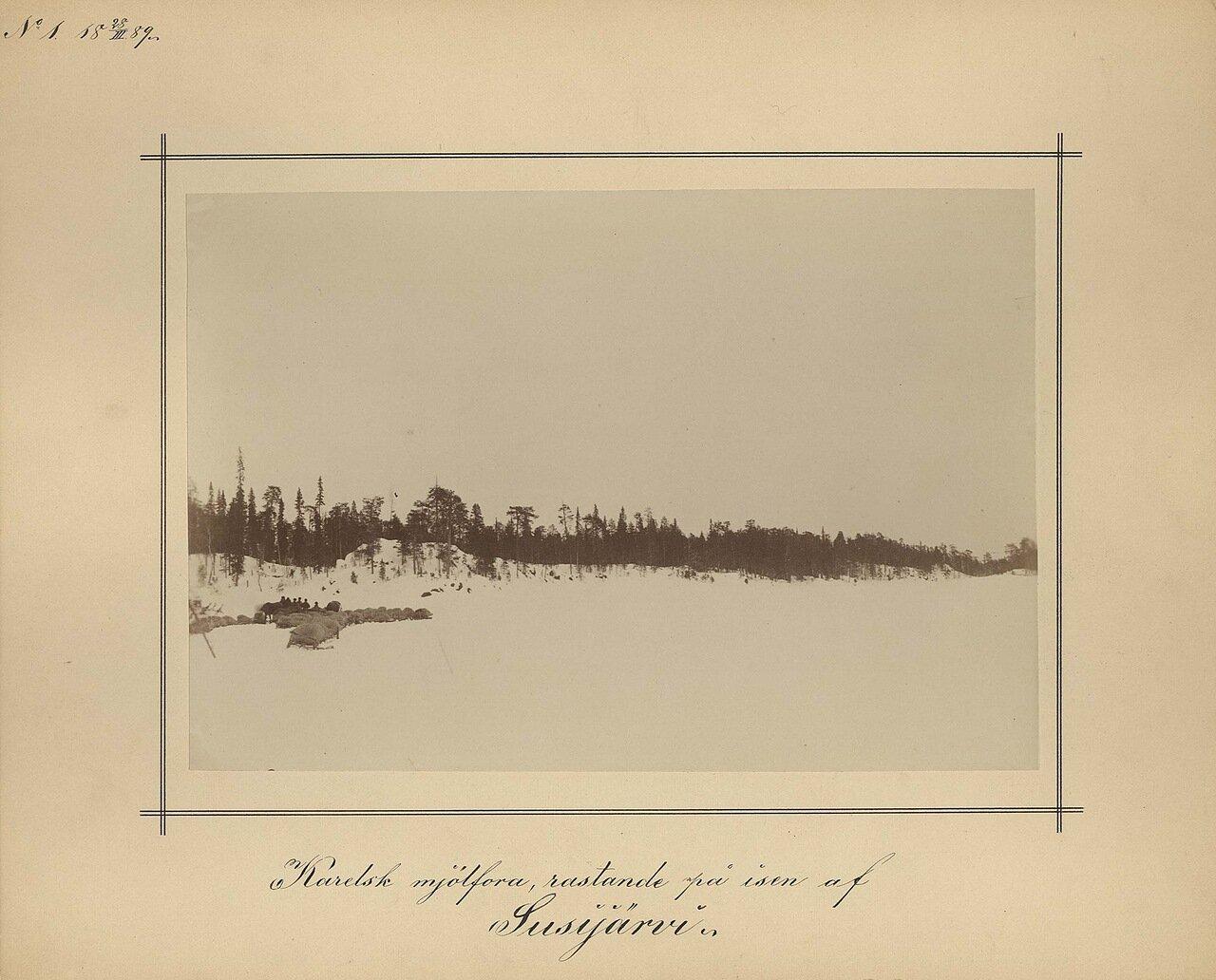 28.3.1889. Ранней весной на Волчьем озере