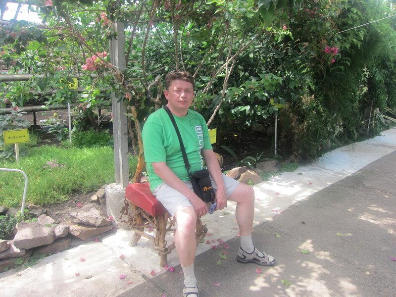 Знаменитый стул из корней и ветвей экзотических растений (25.06.2013)