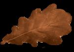 autumn colors factory - bessychou - elem (4).png