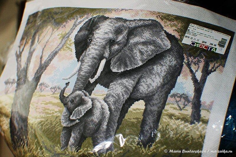 Вышивка слоников, Саратов, 'Сиеста', 30 декабря 2013 года