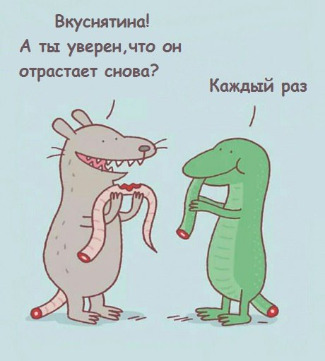 http://img-fotki.yandex.ru/get/9300/35931700.115/0_db059_a5d78751_orig
