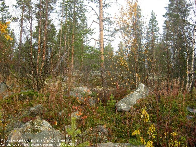 Мурманск, природа