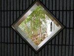 29. Bamboo.jpg