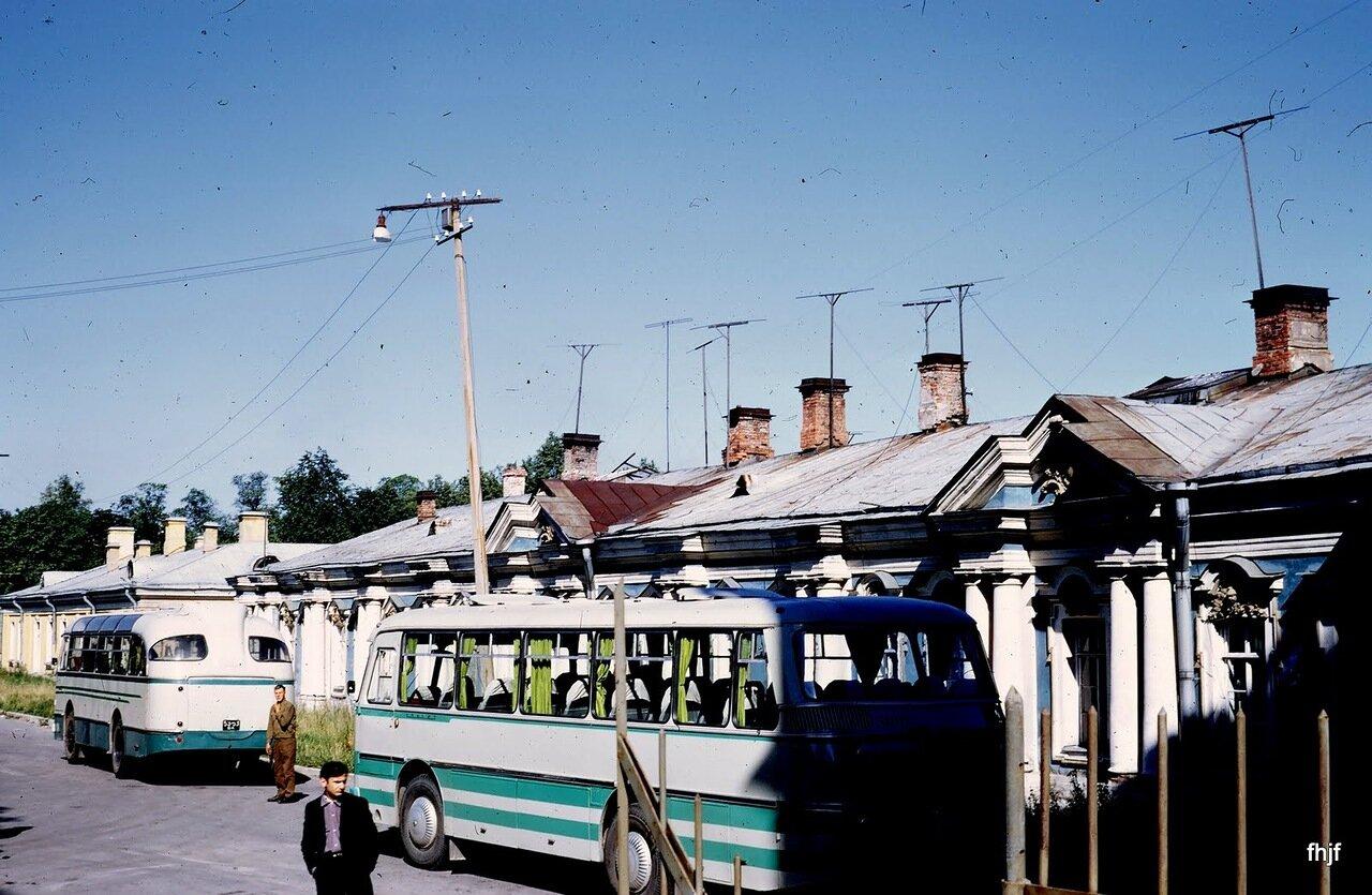 buses waiting - Kodachrome