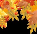 листья - верх  рамки.png