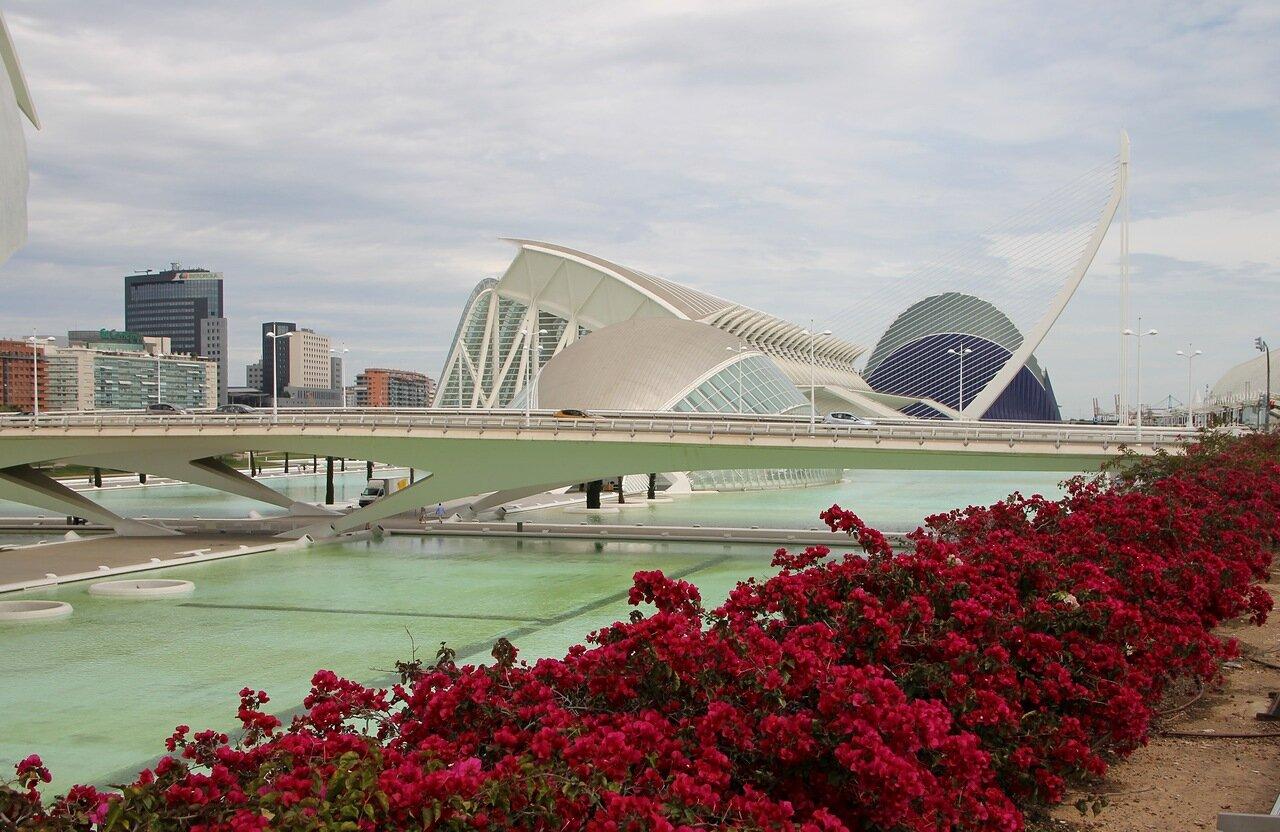 Валенсия. Город искусств и наук (Ciudad de las Artes y las Ciencias)