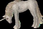 Unicorns / Единороги