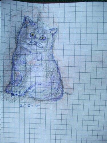 Нарисованный котенок