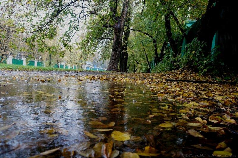 На Прикарпатті оголошено штормове попередження: очікуються сильні опади, грози та град