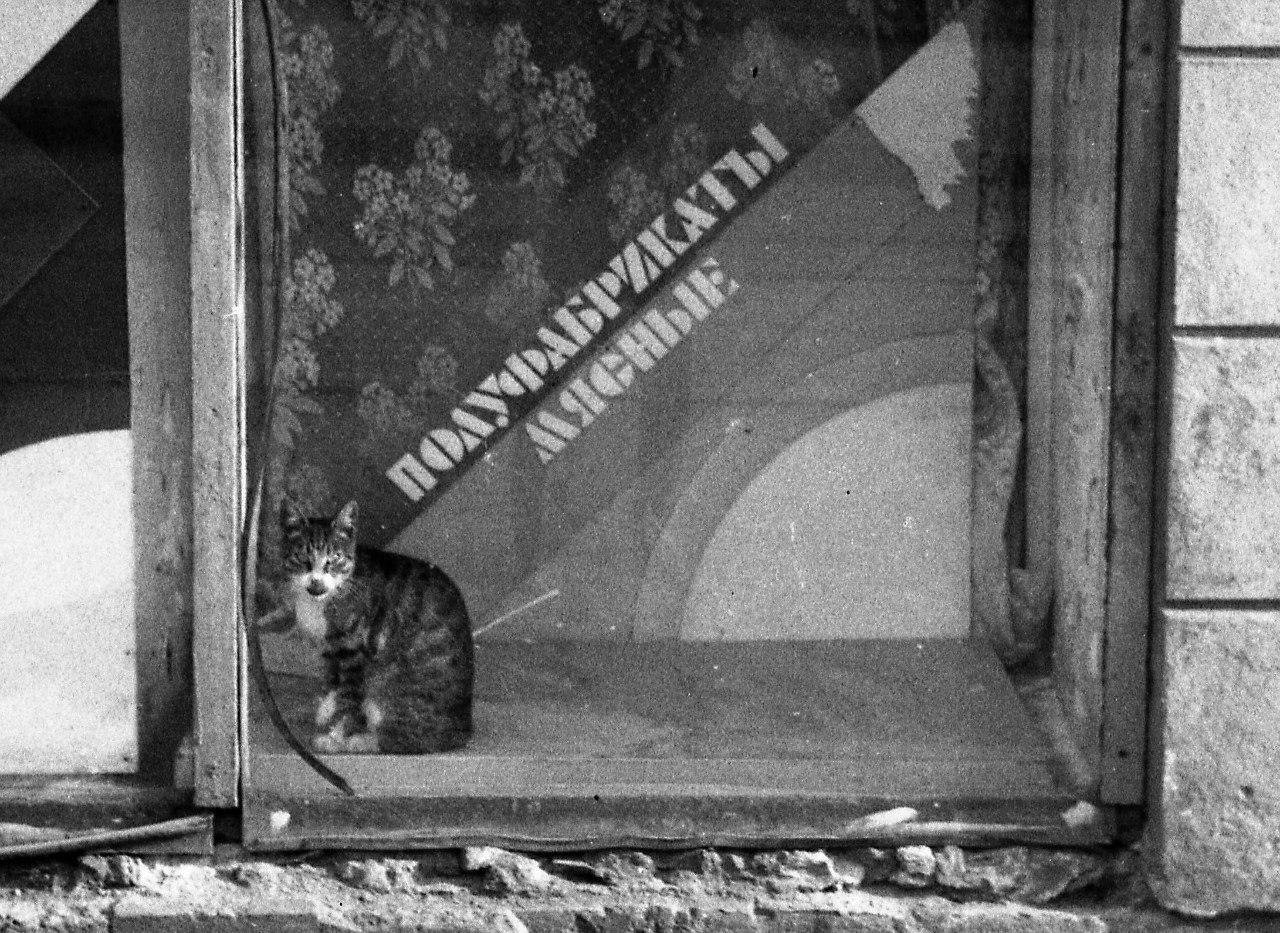 1970-е. Петроградская