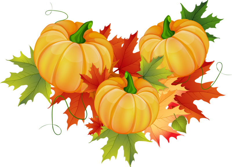 Осень24