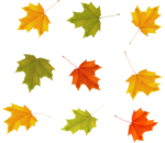 Осень78