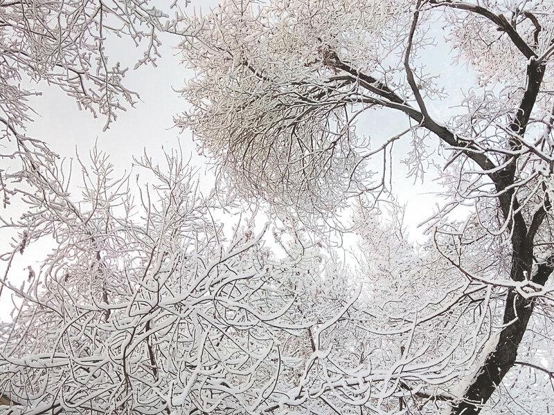 снег1 (12).jpg