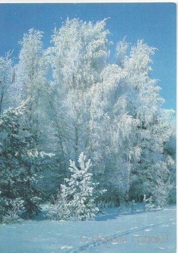 Лес в белом инее. С Новым годом! открытка поздравление картинка