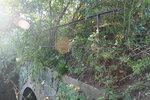 Перила моста (bridge handrail)