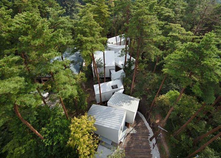 Вместо того, чтобы вырубить лес, дизайнеры ловко поместили постройки между вековыми деревьями. Этот