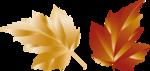 Осень109