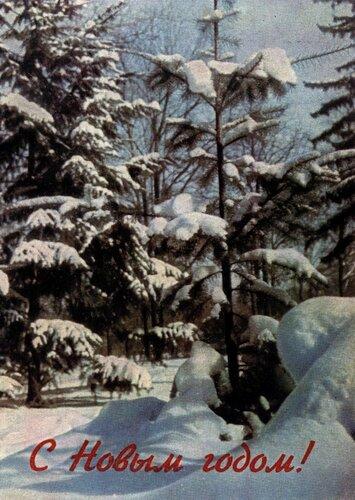 1966 Раскина Л (фото).jpg