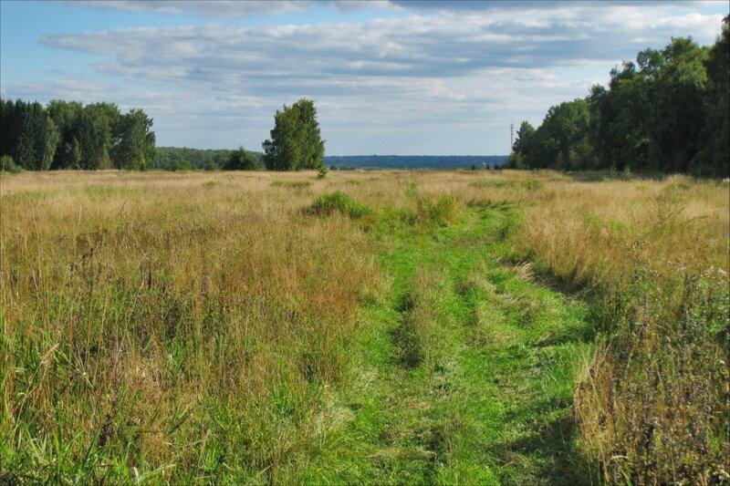 Протасовское поле