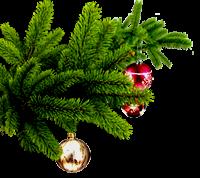 Поздравления с Новым Годом и Рождеством! 0_eeedb_8269cc27_M