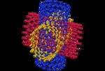 Nanotube-14.png
