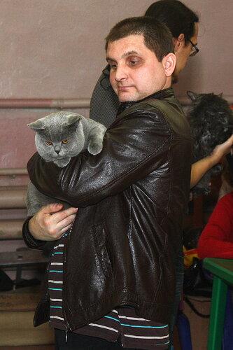 """Международная выставка кошек """"Удивительные кошки"""", 5-6 октября 2013, г. Сургут, ХМАО 0_ddb20_b63525c7_L"""