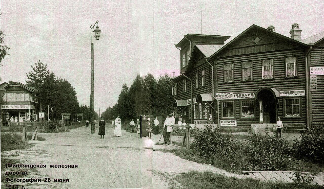 Финляндская железная дорога. 1914 год