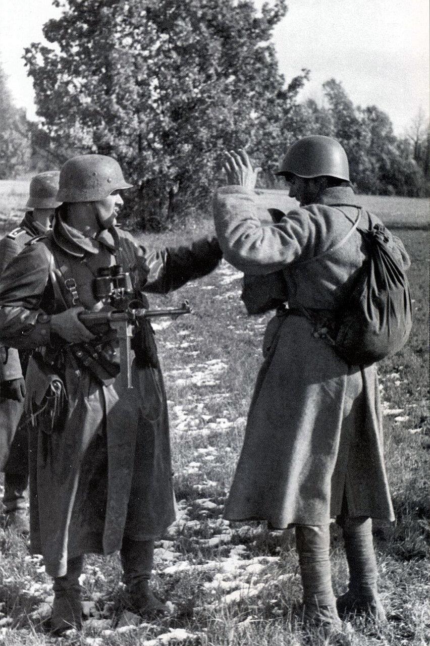 готовить вкусную военные фотографии немцев ищете подходящий