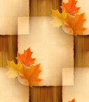 Sheet of paper with autumn leaves on wooden background. Vector i