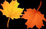 Осень117
