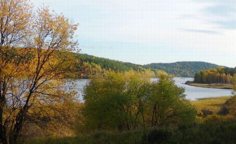 Осенний пейзаж озера (22.07.2013)