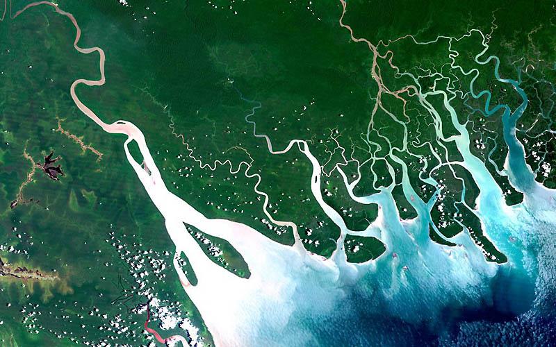 8. Жизнь вокруг дельты может быть опасна. Обычно они расположены намного ниже и их легко размыть. Он