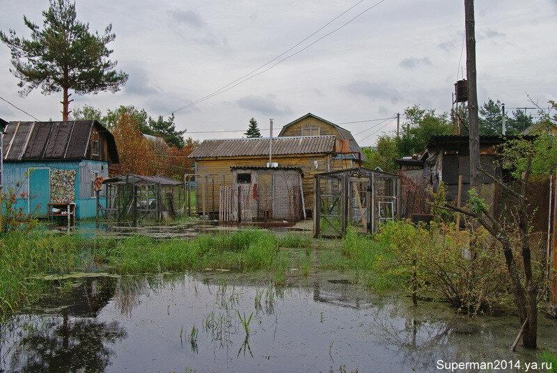 Дачный посёлок «Союз» или Подмосковная Венеция