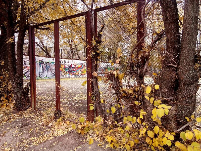 Артефакты осени-забор.jpg