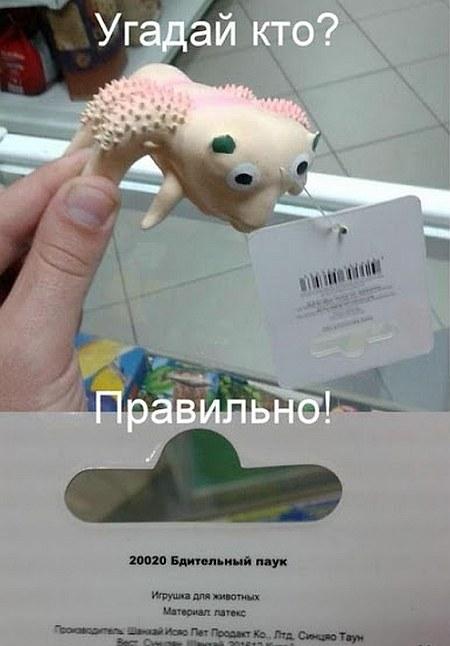 http://img-fotki.yandex.ru/get/9304/35931700.ff/0_d9dd6_3d7ee9cf_orig