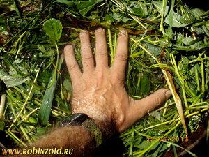 замачивание травы