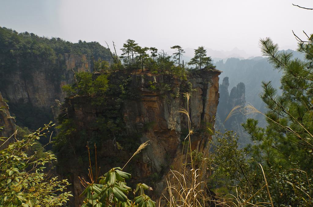 Фото 17. Поездка по Китаю. Что посмотреть в национальном лесном парке Чжанцзяцзе. Здесь была тишина, весенний ветер и синие птицы