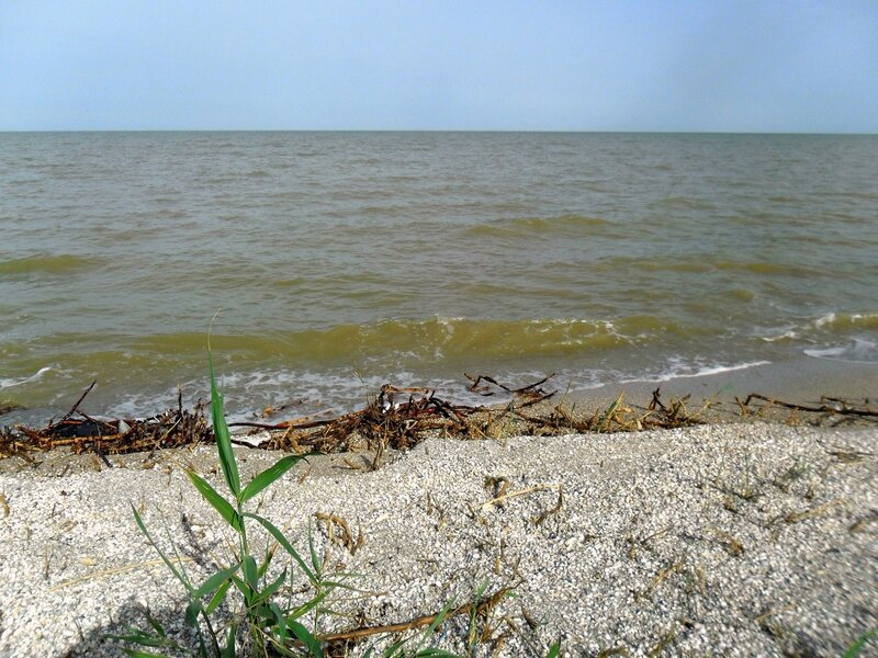 В начале лета, пески и воды