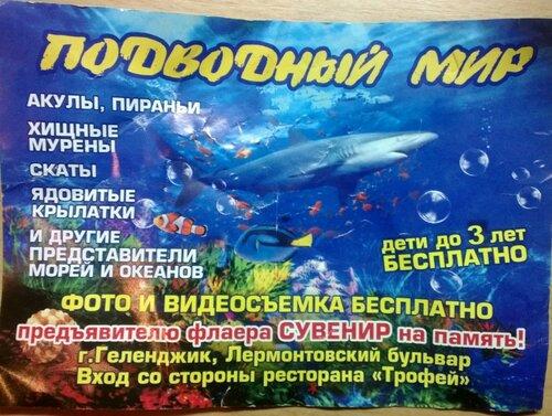 Подводный мир океанариум в Геленджике лермонтовский бульвар
